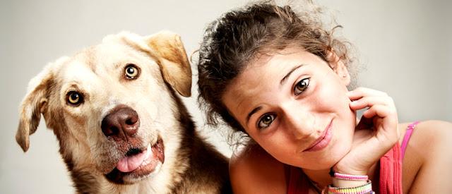 No te enamores de una mujer que ama a los perros: la carta que se ha vuelto viral en internet