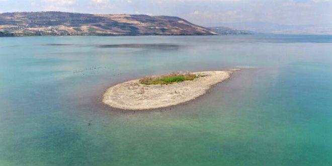 Penyusutan pada Danau Tiberias ini selain menyebabkan kepanikan penduduk yahudi, juga menyebabkan munculnya pulau kecil di tengah danau. Pada September 2016 yang lalu, seorang fotografer bernama Rahaf mengabadikan pulau kecil di Danau Tiberias melalui udara.