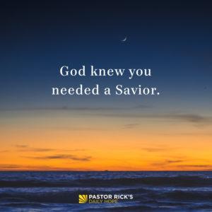 Your Gentle Yet Powerful Savior by Rick Warren