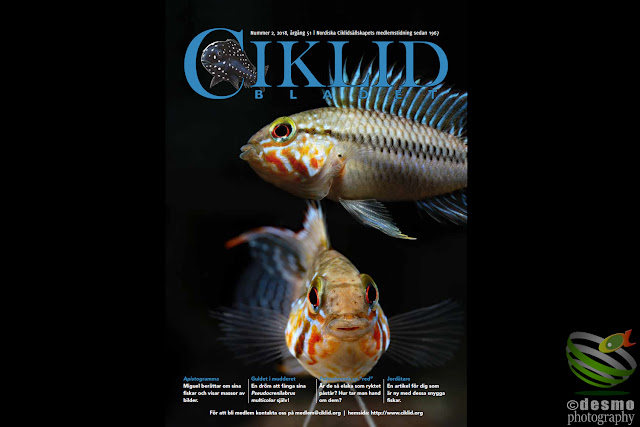 Ciklidbladet 2018/02