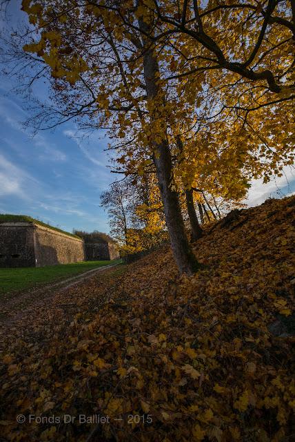Fortifications de Neuf-Brisach… Couleurs d'automne : Tour bastionnée 2