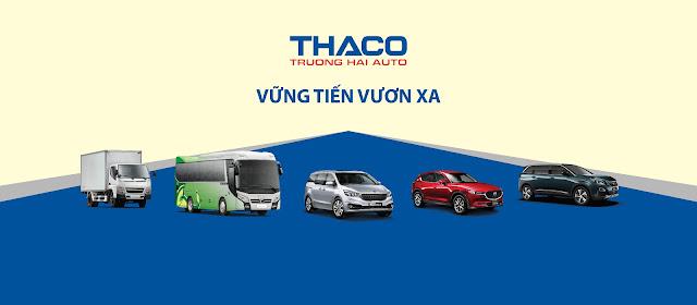 Thaco chi trả cổ tức tiền mặt 12%