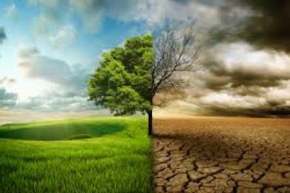7 Aktifitas Manusia Yang Bisa Menyebabkan Pemanasan Global (Global Warming)