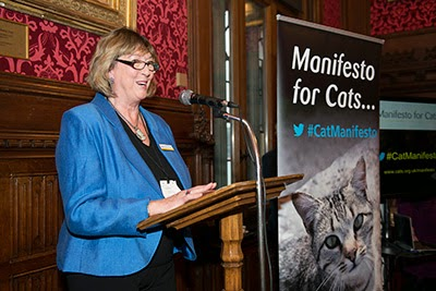 Heather McCann at the Manifesto for Cats launch