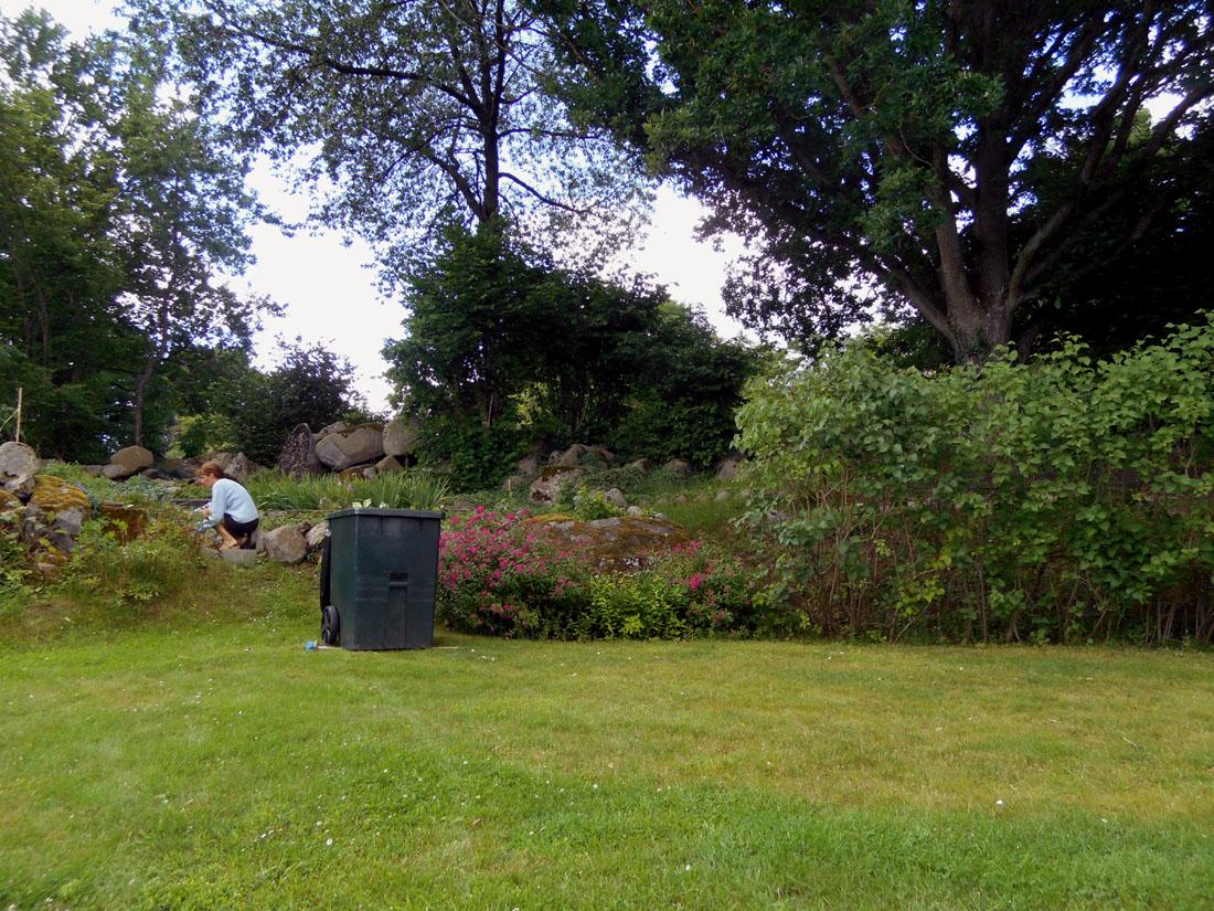 lavori in giardino, 14 luglio 2016