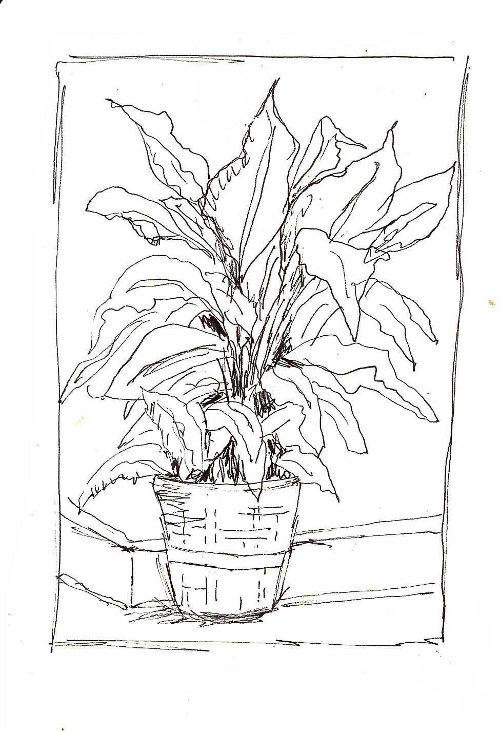 Art du Jour by Martha Lever: Pocket Sketching