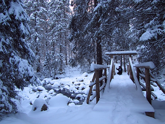 Mostek nad Suchym Potokiem.