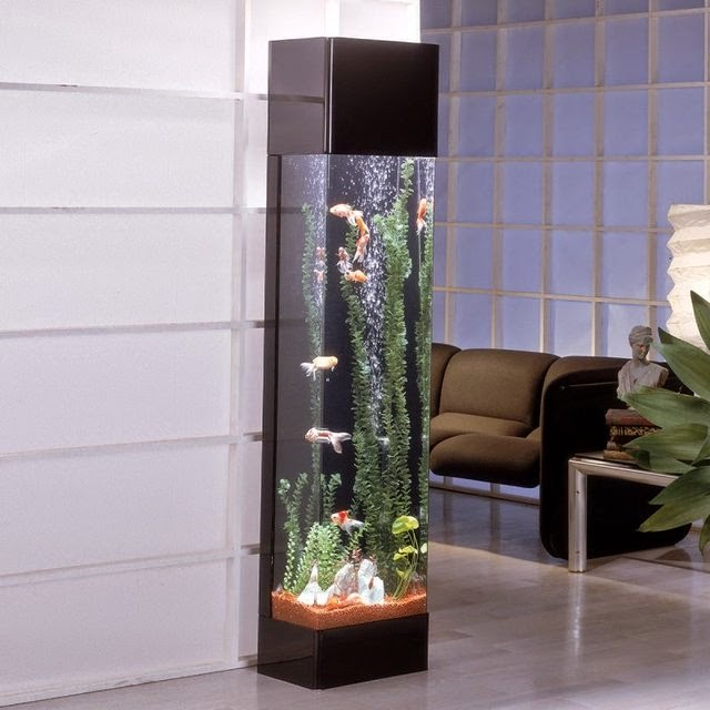 Coolest Fish Bowls and Awesome Aquarium Designs (15) 6