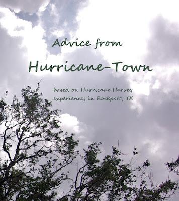 Hurricane Tips and Wisdom