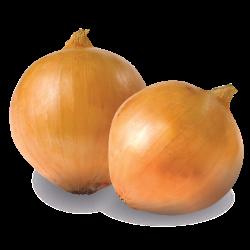 beneficios de comer cebolla para adelgazar
