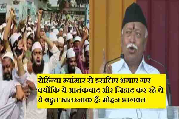 rss-chief-mohan-bhagwat-said-rohingya-are-jihadi-atankwadi-news