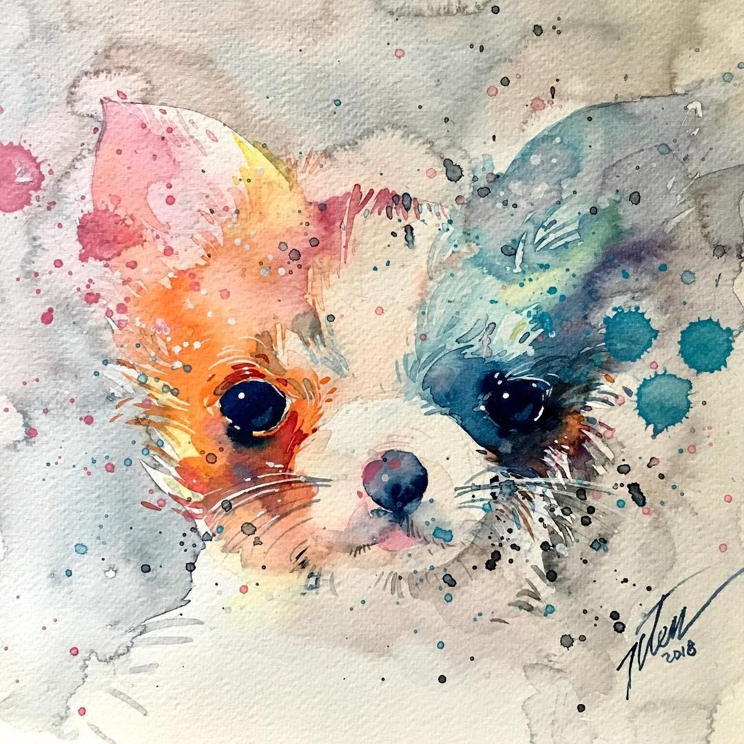 12-Chihuahua-Tilen-Ti-Paintings-of-Animals-with-Splashes-of-Paint-www-designstack-co