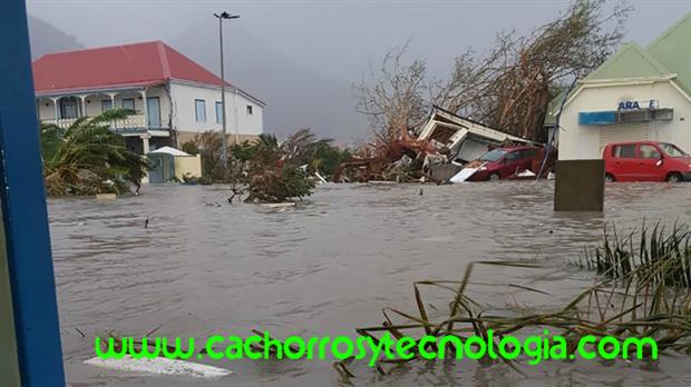 huracan-irma-2017 shurkonrad www.cachorroytecnologia.com