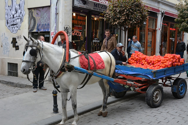 Horse and farmer in Istanbul