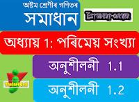 Class: 8, Mathematics, Assam, SCERT Solutions, SEBA, Content