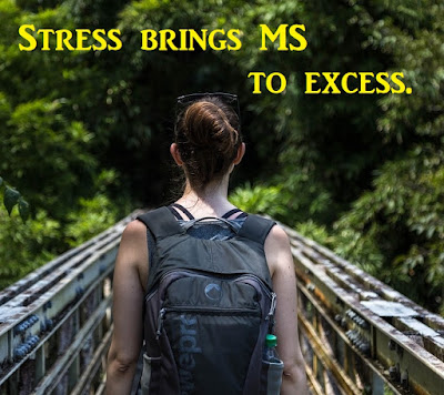 Stress brings MS to excess