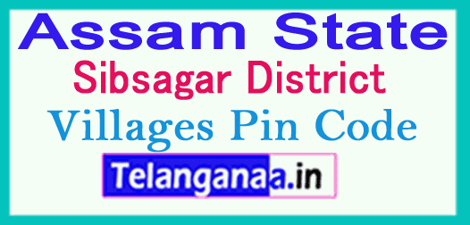 Sibsagar District Pin Codes in Assam State