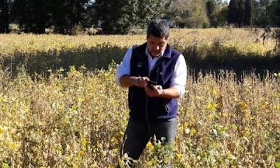 app-inta-margenes-cultivos