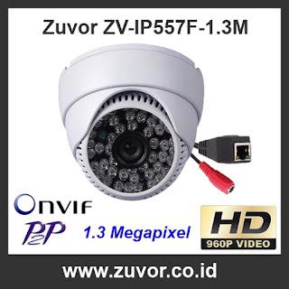 ip557f 1 3m IP Camera Pricelist September 2015