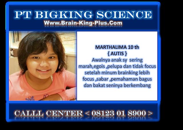 http://www.brain-king-plus.com/
