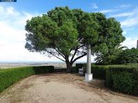 https://castvide.blogspot.pt/2018/04/photos-garden-jardim-do-penedo-monteiro.html