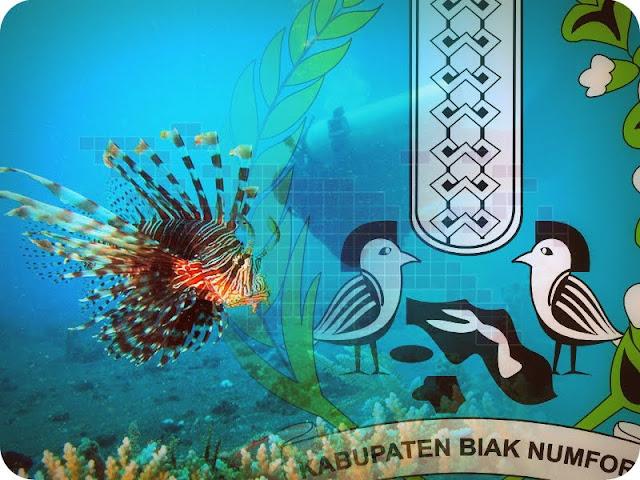 Animo Mendaftar Lomba Foto Bawah Laut di Festival Biak Munara Wampasi Kian Meningkat