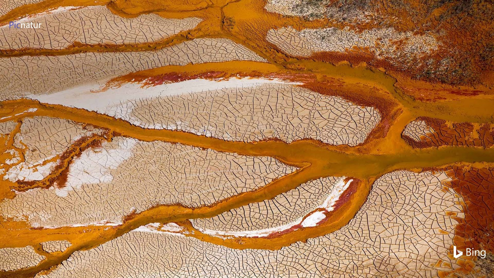 Channels of the Rio Tinto in Spain © Oscar Diez Martinez/Minden Pictures