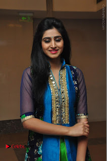 Actress Model Shamili Sounderajan Pos in Desginer Long Dress at Khwaaish Designer Exhibition Curtain Raiser  0013.JPG