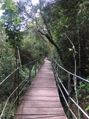 Trilha Suspensa do Parque Nacional da Serra dos Órgãos