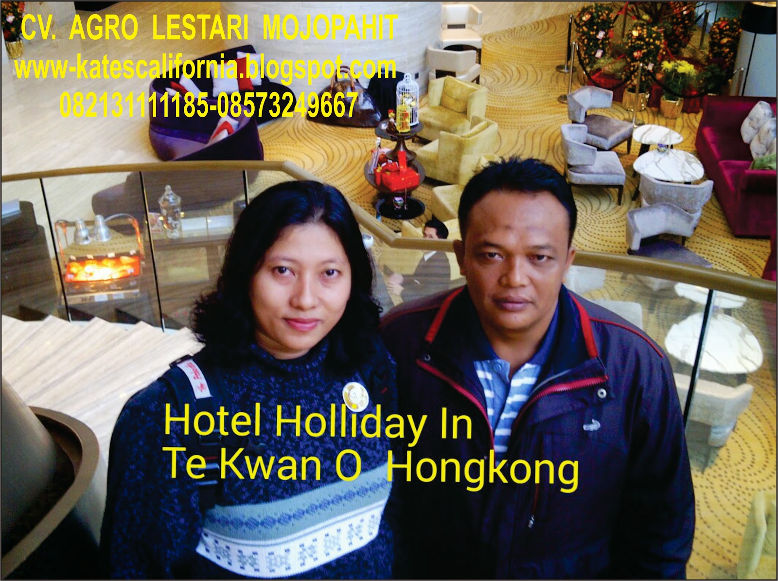 http://www.indonetwork.co.id/lestari_j4y4/group+111925/pintu-harmonika.htm