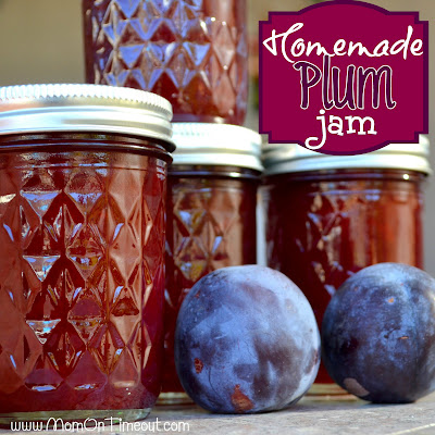 Homemade Plum Jam | MomOnTimeout.com SO much better than store bought jam!
