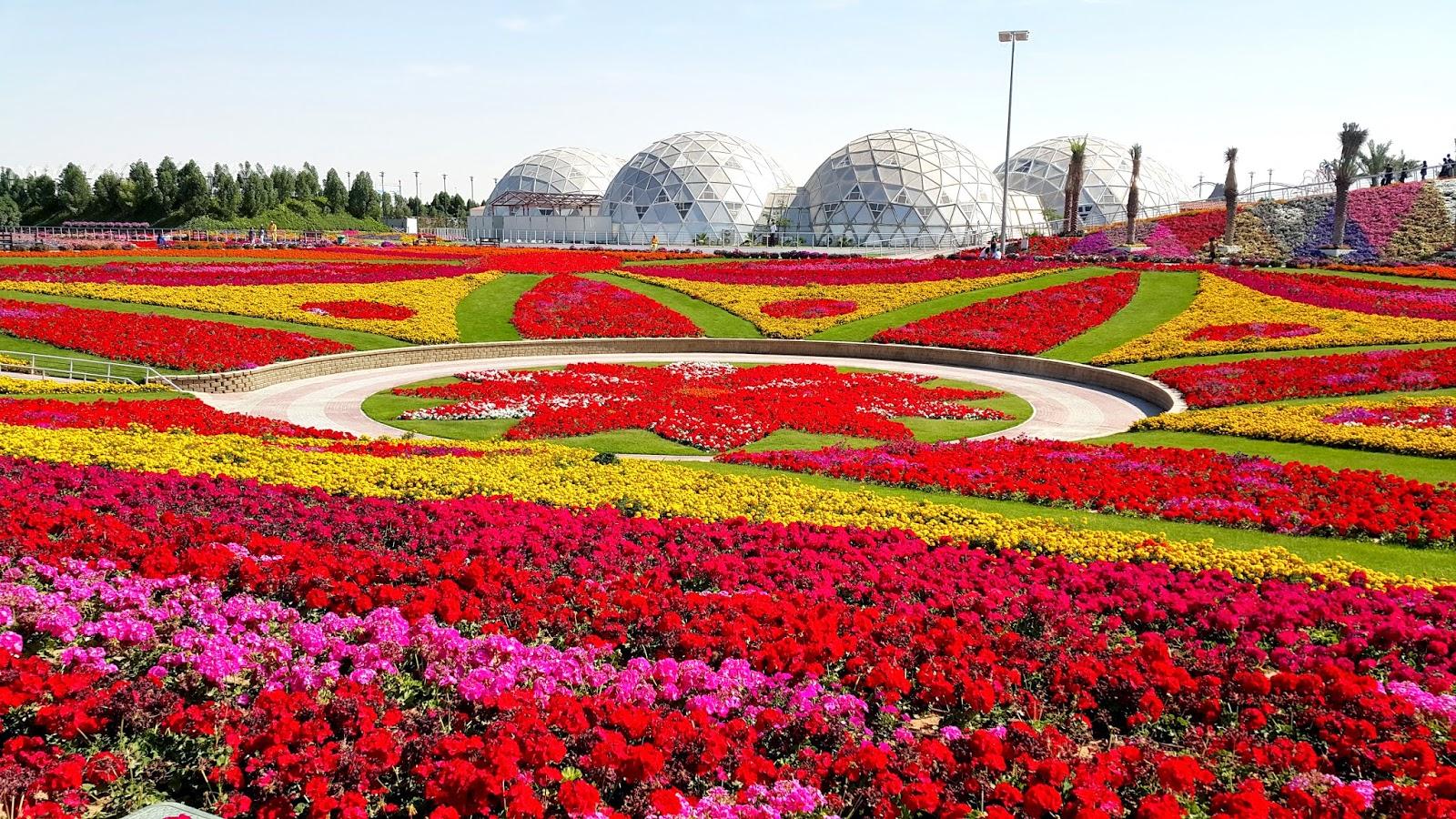 Enjoy Life Flowers Of Dubai Miracle Garden