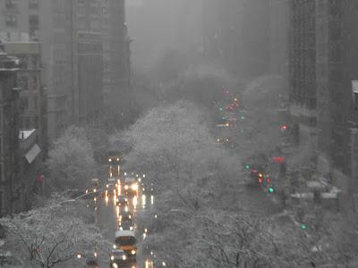 snow storm new york city