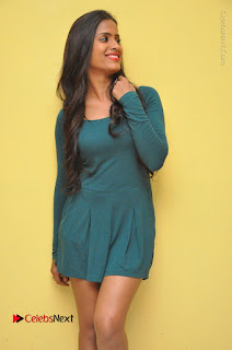 Telugu Actress Prasanthi Stills in Green Short Dress at Swachh Hyderabad Cricket Press Meet  0046.JPG