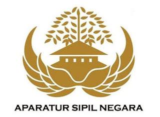 Menpan RB Tegaskan Peraturan Pemerintah Tentang PPPK Terbit Februari