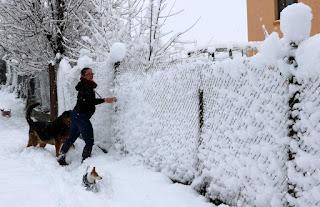 The snow falls