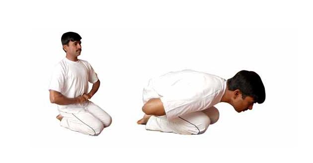 మండూకాసనం - Mandukasanam
