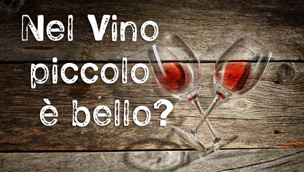 Wine blog roll il blog del vino italiano piccolo for Piccole planimetrie con cantine