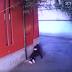 Estudiante de secundaria es atacada por taxista en calles de Tlalpan (VIDEO)