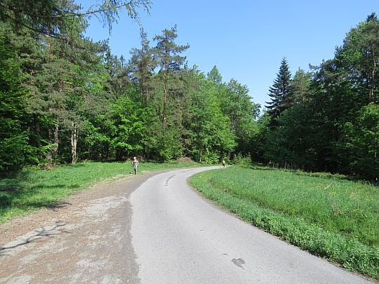 Droga z Przełęczy Małastowskiej.