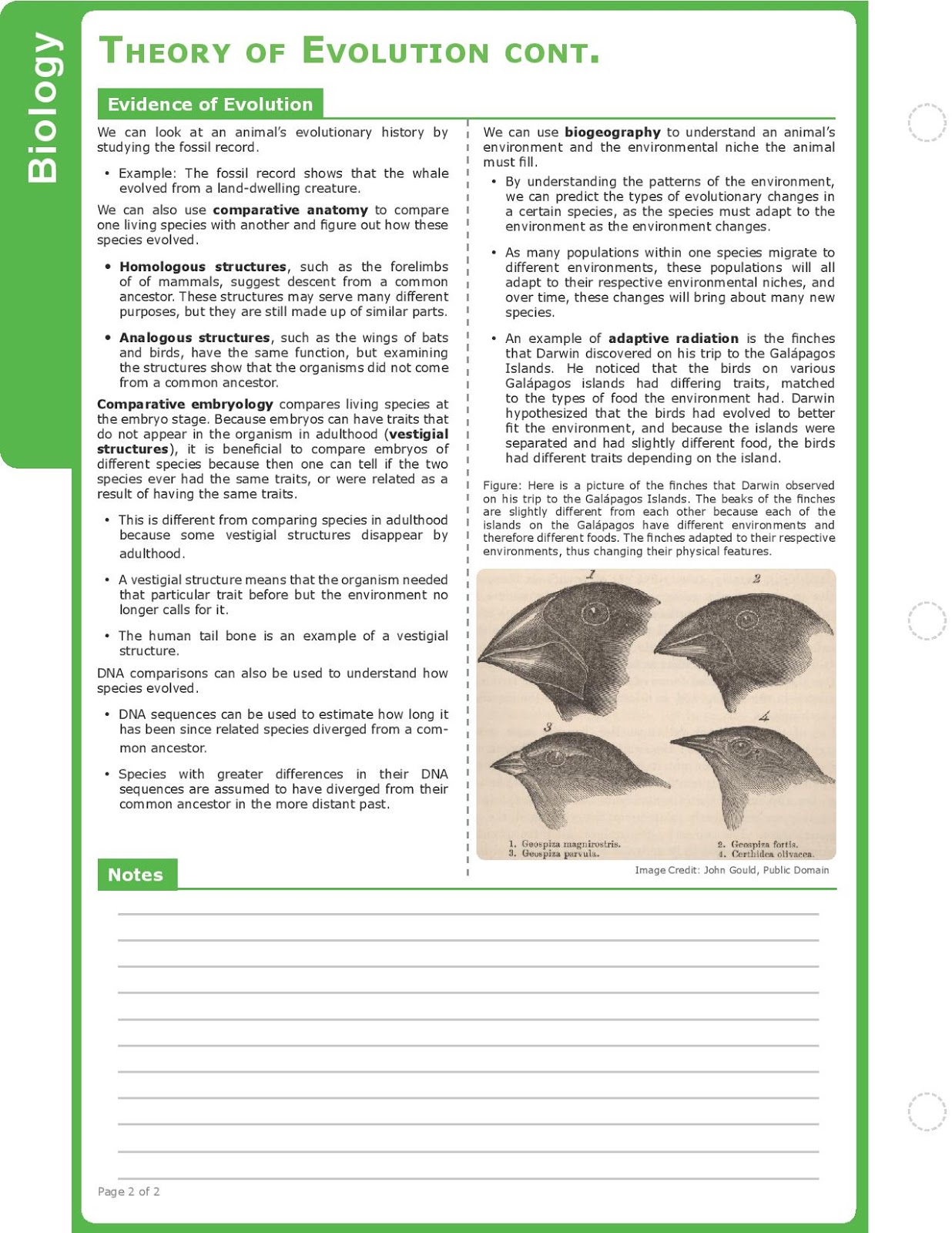 natural selection evolution study guide Honors biology content guide (this includes the major concepts for which students will be responsible in this unit additional content as studied in the unit under these major concepts may.