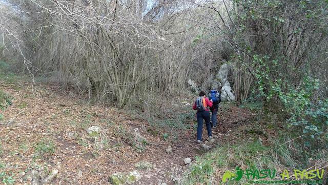 Subiendo por el bosque a Peña Careses