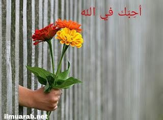 bahasa arab sehari hari tentang cinta
