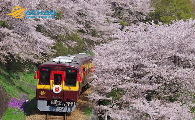Điểm danh 3 đường tàu đẹp nhất để ngắm cảnh khi du lịch Nhật Bản1