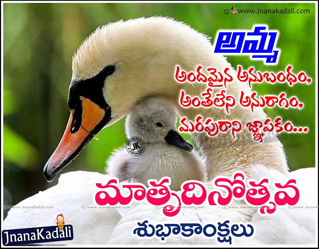 Here is a Top Telugu Amma Quotes and kavithalu,Best Telugu Quotations on Mother, Nice Telugu Mother Sentiment Messages online,Inspirational Telugu Amma Kavithalu, Cool Telugu Mother's day love Poems,Telugu Whatsapp Mother's day Images,Nice Telugu Mother's day Love Poems and Messages,Beautiful Telugu Language Mother's day and Child Quotes images.