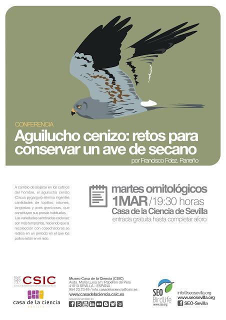 """Conferencia: """"El Aguilucho cenizo. Retos para Conservar un Ave del secano"""". Por Francisco Fdez. Parreño, 1 de Marzo 2016."""