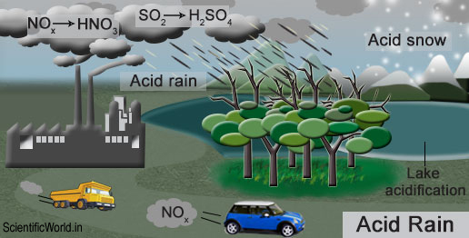 Image result for cause of acid rain