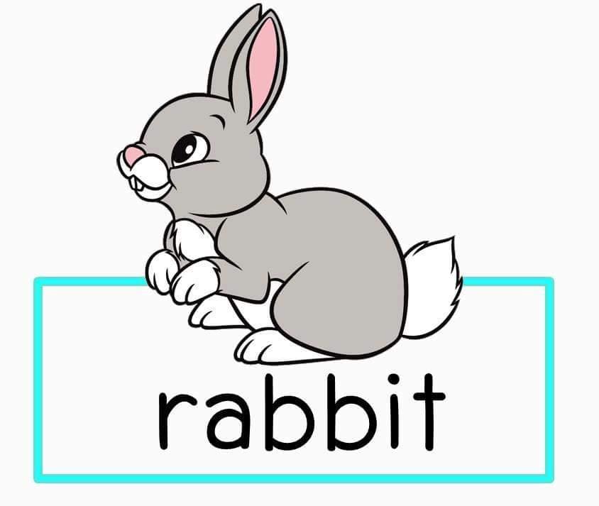 Заяц на английском с картинкой