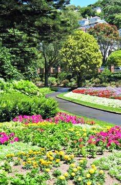 10 Inspirational Botanic Gardens   Wellington Botanic Gardens, New Zealand