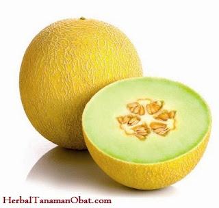 melon galia, melon, vitamins melon, manfaat melon untuk diet, manfaat melon galia, manfaat buah melon, khasiat buah melon untuk kesehatan tubuh